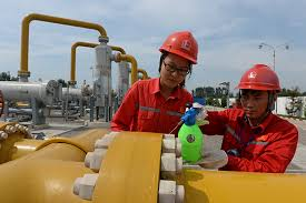 China boosts petrochemical sector development